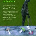 Doubrava_plakát